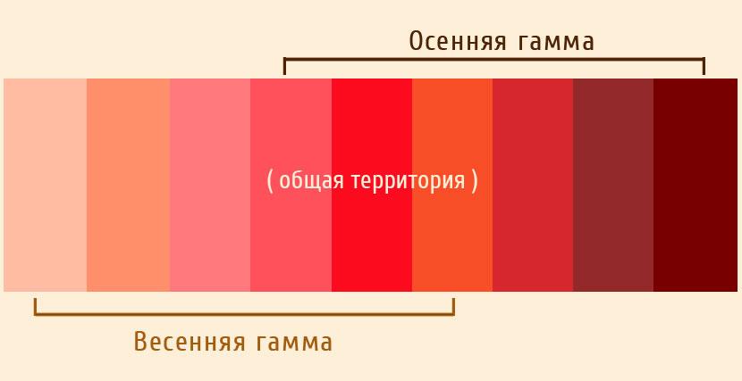 Родственный характер палитр весеннего и осеннего цветотипов на примере красных оттенков